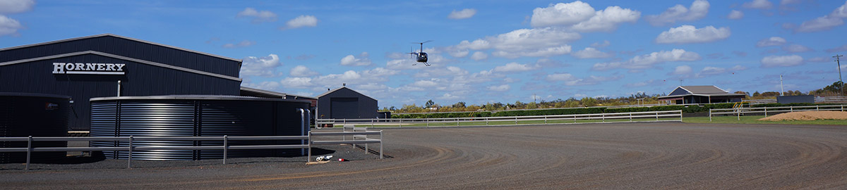 Hornery Helicopter Services