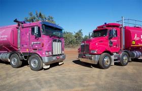 The Pink Trucks